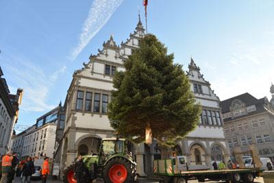 Aufbau Weihnachtsbaum 2016 ©Stadt Paderborn
