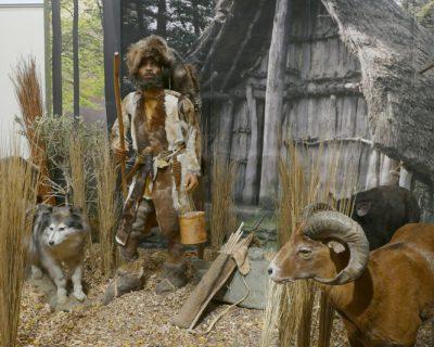 Peters Reise in die Steinzeit