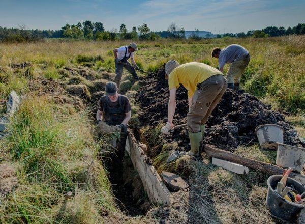 Über 20 Freiwillige im Einsatz für die Renaturierung der Eggemoore